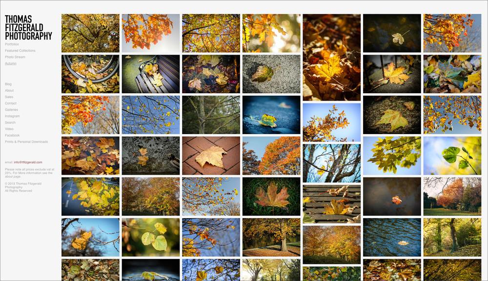 thomas-autumn-on-photoshelter.jpg