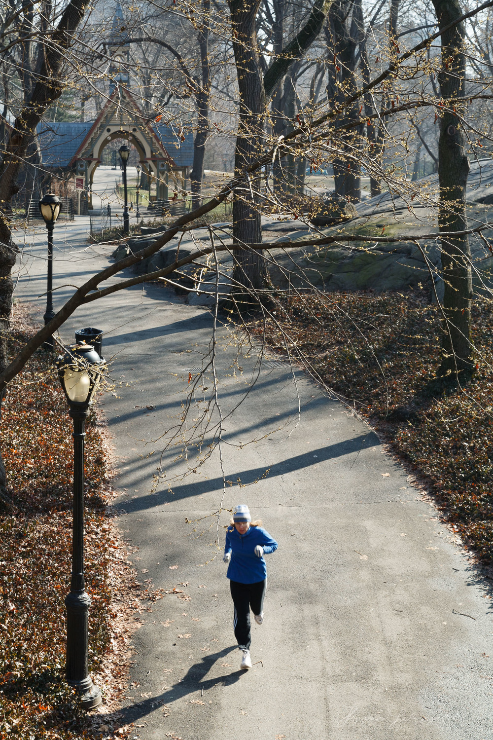 Jogger In New York City Central Park