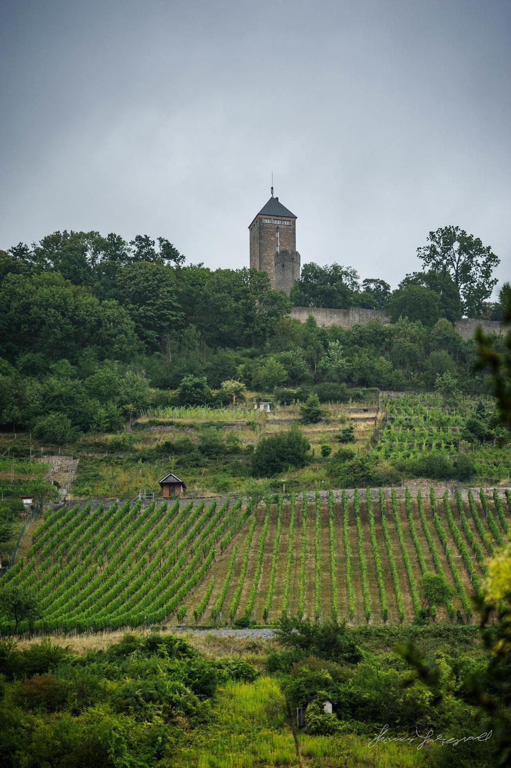 Heppenheim-Rain-00008.jpg