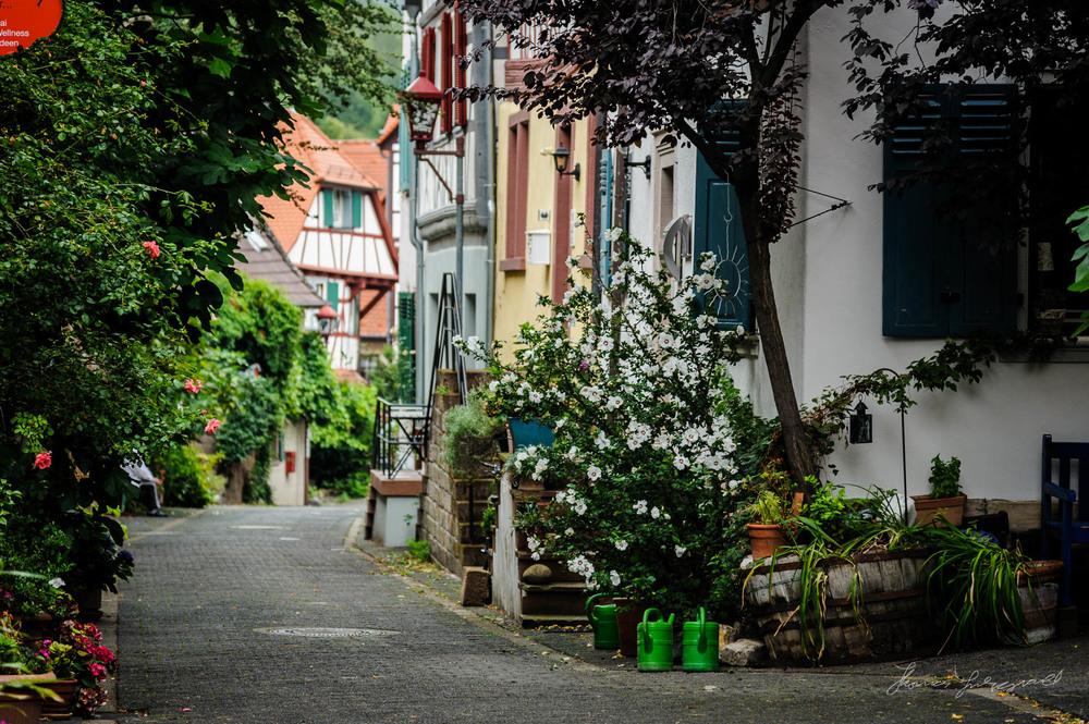 Heppenheim-Rain-00030.jpg