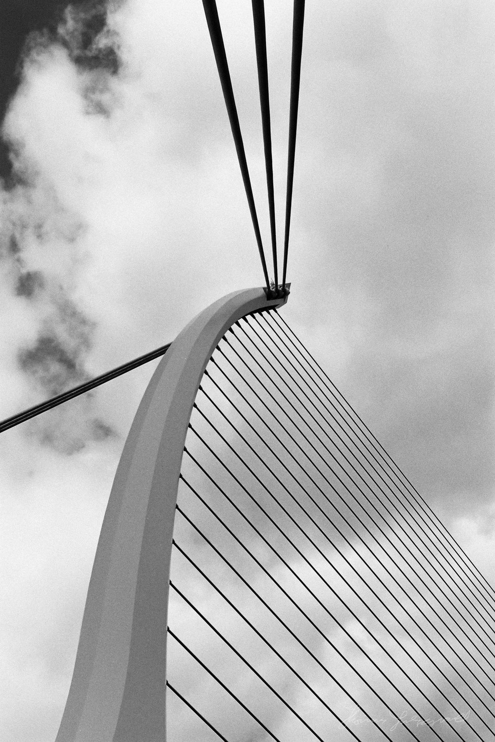 The Suspension cables of the Beckett Bridge