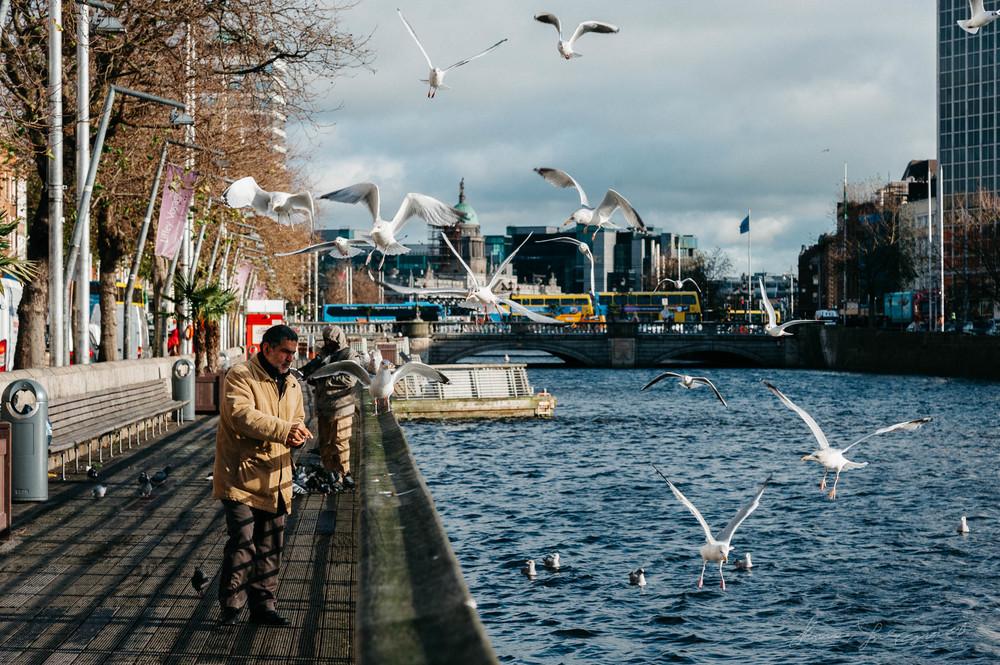 Man feeding seagulls on the boardwalk in Dublin.