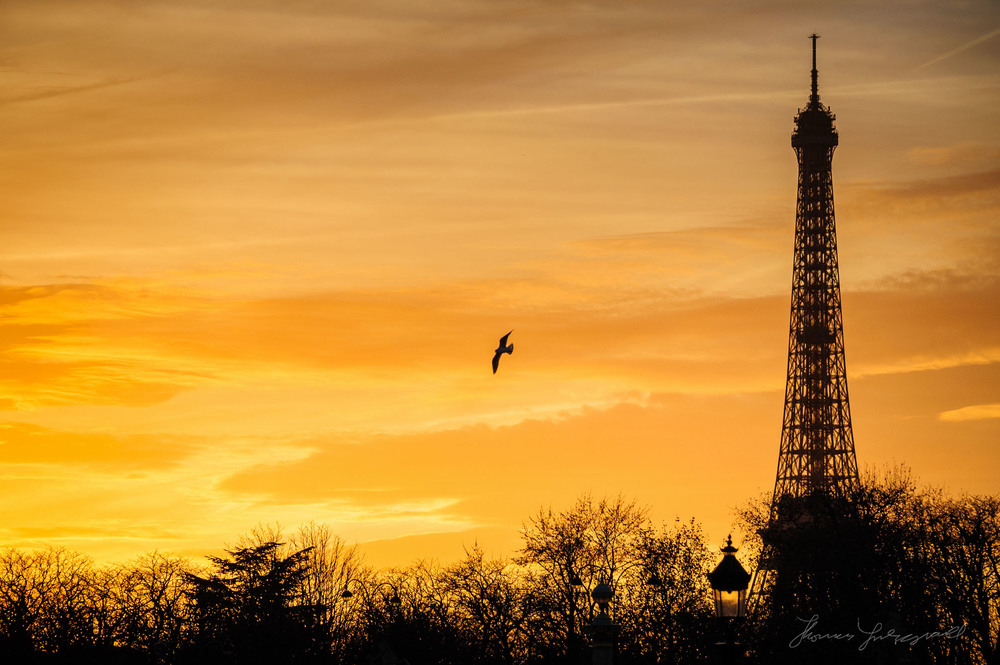 Sunset and the Eifel Tower
