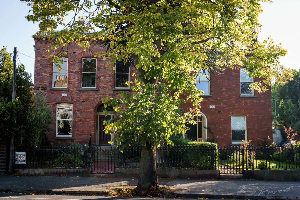 Autumn-Dublin-Sony-A6000-01.jpg