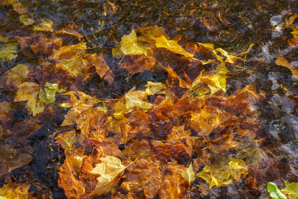 Autumn-Dublin-Sony-A6000-65.jpg