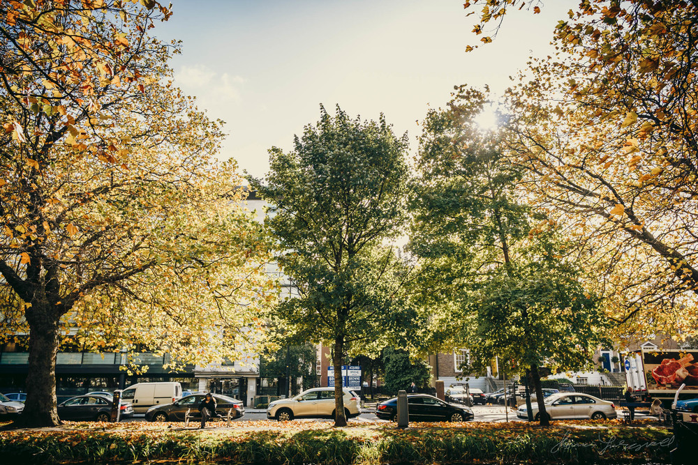 Autumn-Dublin-Sony-A6000-68.jpg