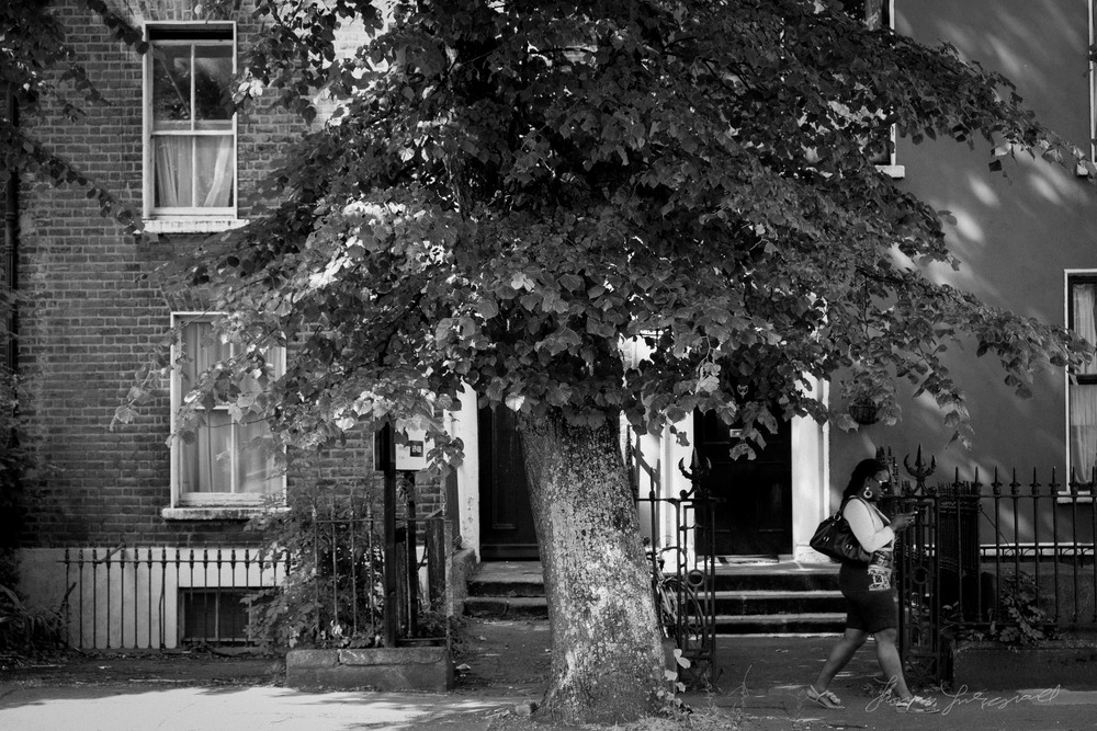 woman-tree.jpg