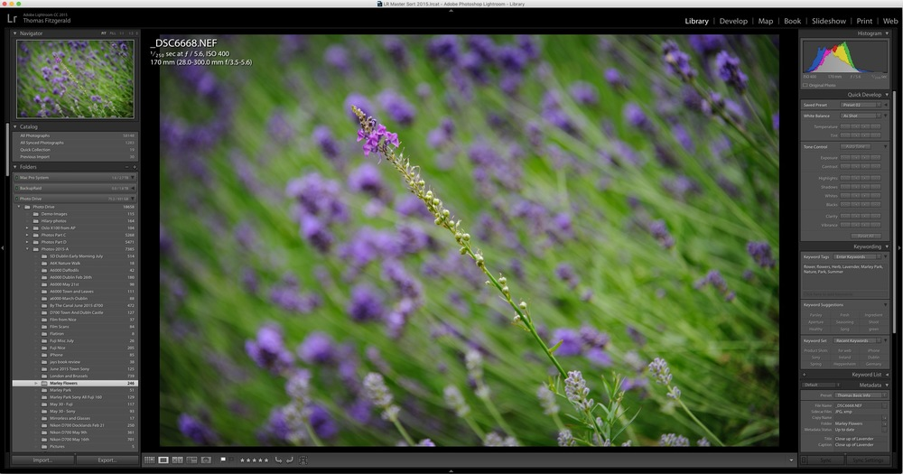 How to Improve Performance in Lightroom CC / 6 and Possibly Stop Crashes