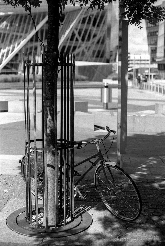 bike-by-canal.jpg