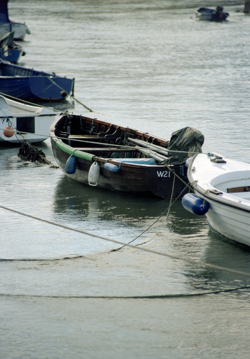 wicklow-boats2.jpg