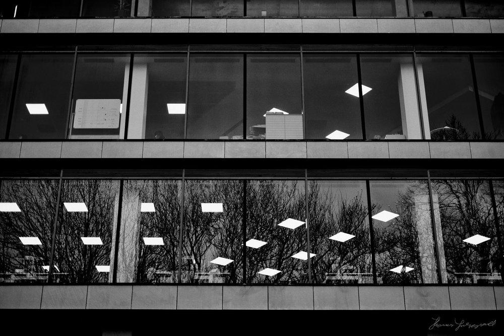 Street-Photo-Mar-7-06.jpg