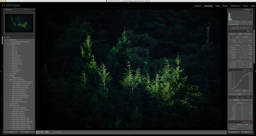 lightroom-trees.jpg