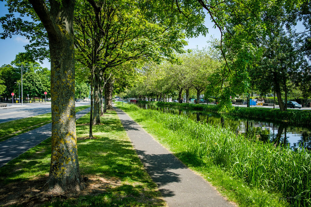 Sunlight and Trees over the CanalTwo years with Fuji X-Pro2 - La
