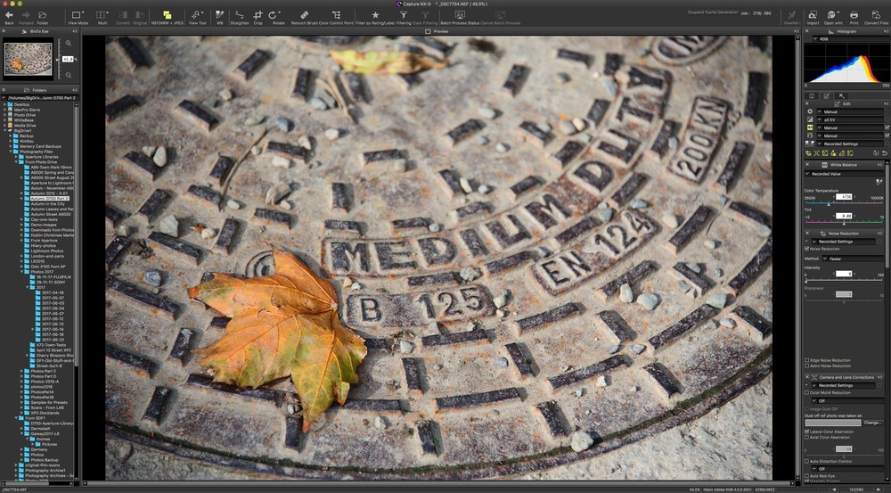 Alternative Workflows: Working with Your Camera's Own Software