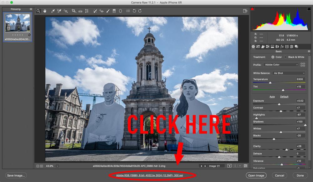 Photoshop Camera RAW Window