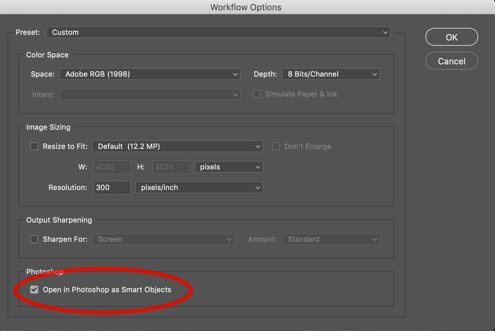 Camera RAW Workflow Options Dialog Box