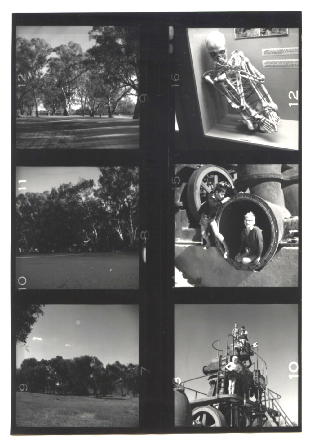 Lin Richardson, [contact sheet, with bound skeleton], c. 1970, digital scan of silver gelatin print in notebook