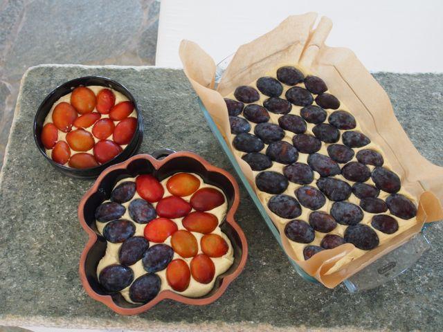 italianplumforgivingfruittortes