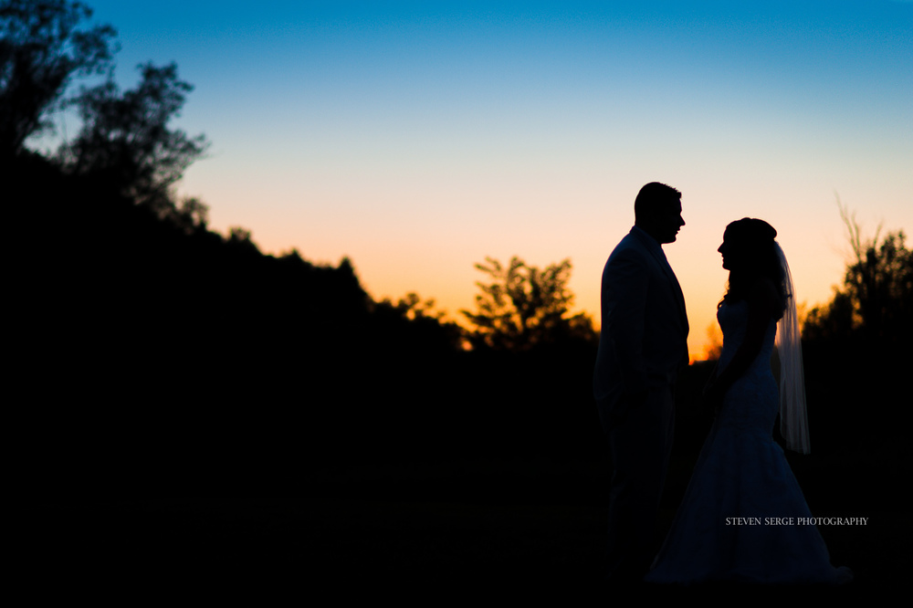 Clarks-Summit-PA-NEPA-Wedding-Photographer-Inn-Abingtons-Party-photography-steven-serge-33.jpg