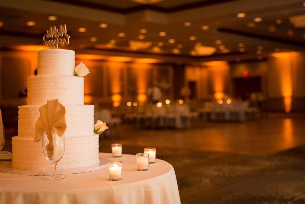 scranton-hilton-wedding-photographer-steven-serge-northeast-pa--52.jpg
