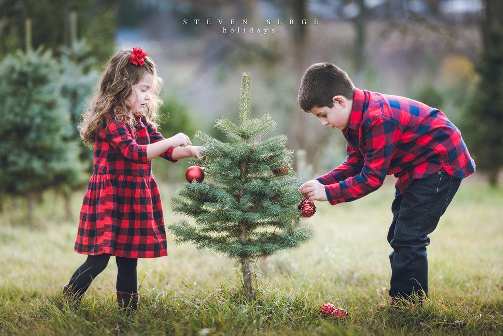 Christmas17tree-1.jpg