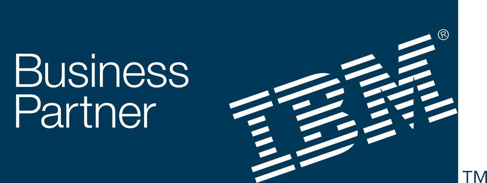 IBM Mentor-Protege Company