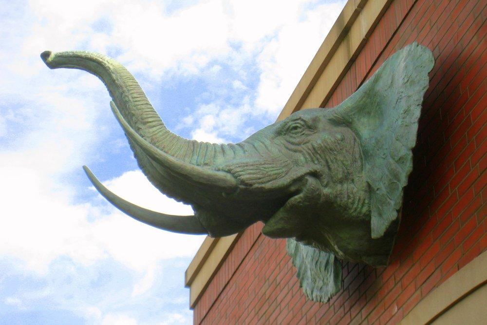 Tufts_University_Elephant.jpg