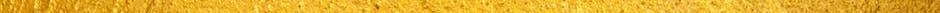 gold linee.jpg