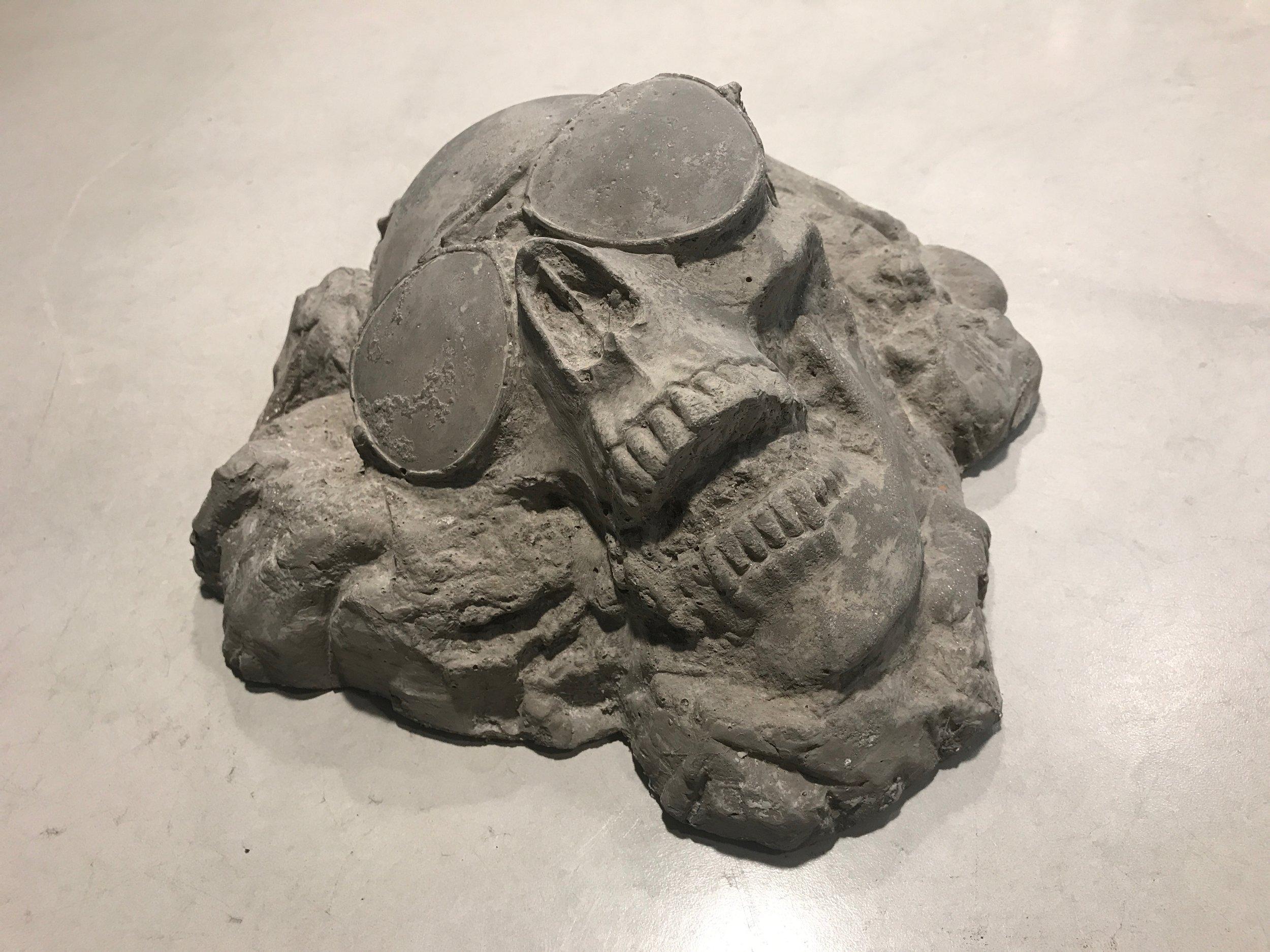 Ammonite fossils - Stock Image | Ammonite(аммониты) | Pinterest ...