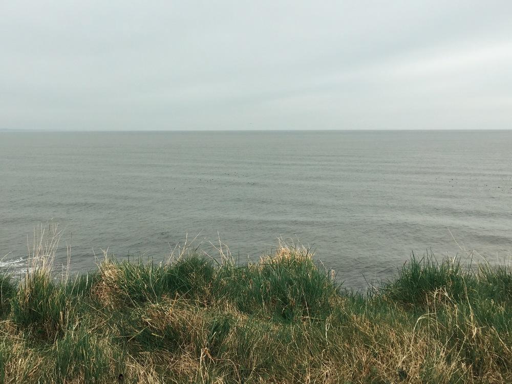 St. Andrews coastline
