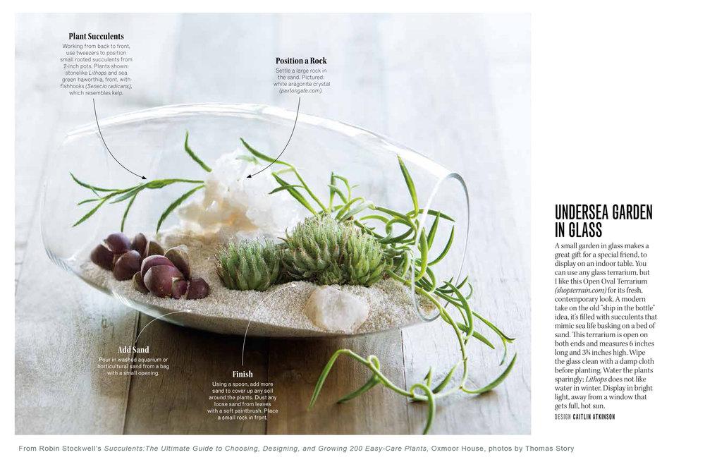 Succulents_terrarium.jpg