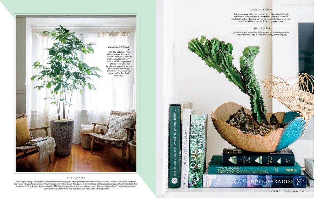 HousePlants-2.jpg