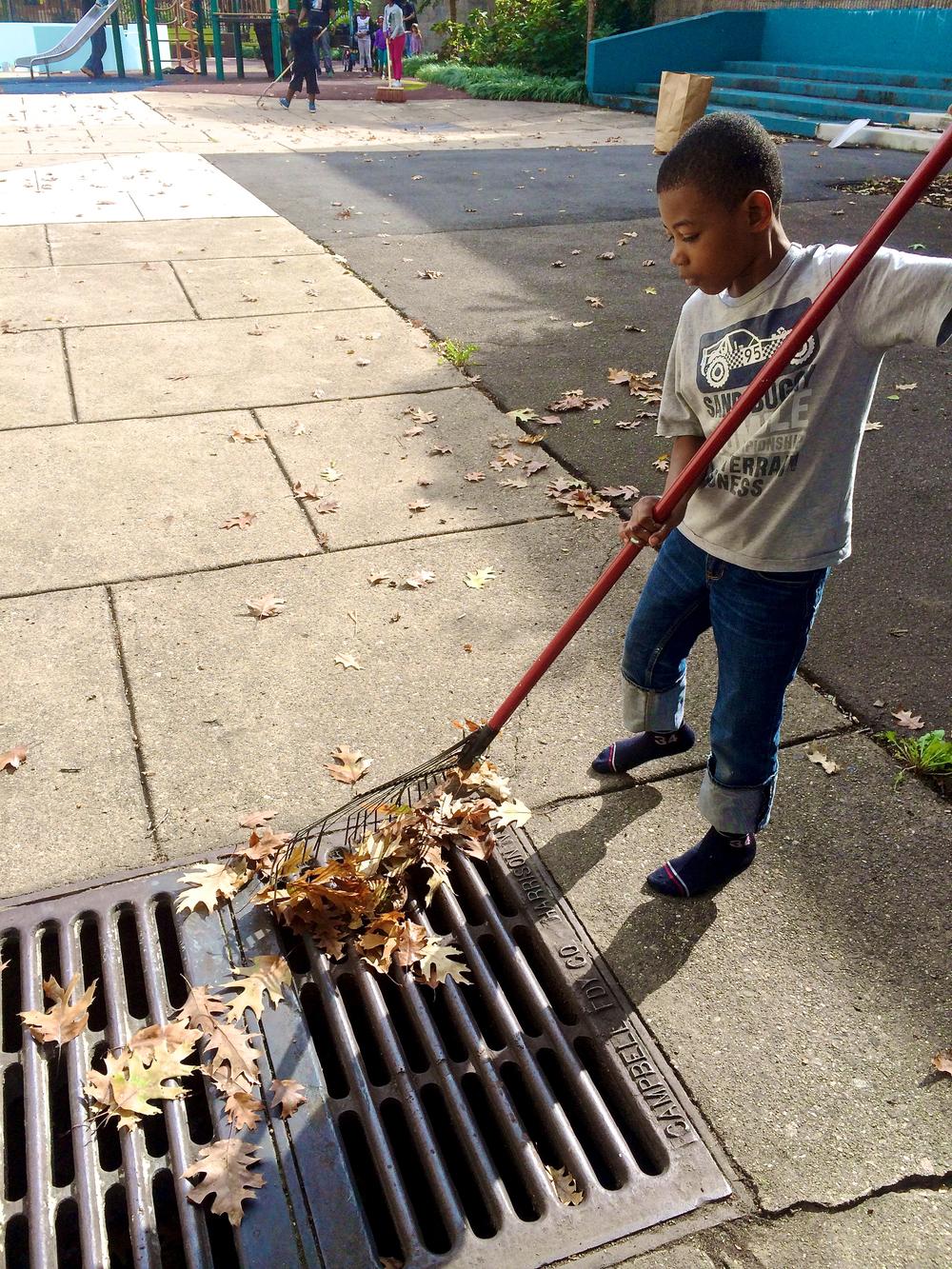 Fall_Cleanup_2_3.jpg