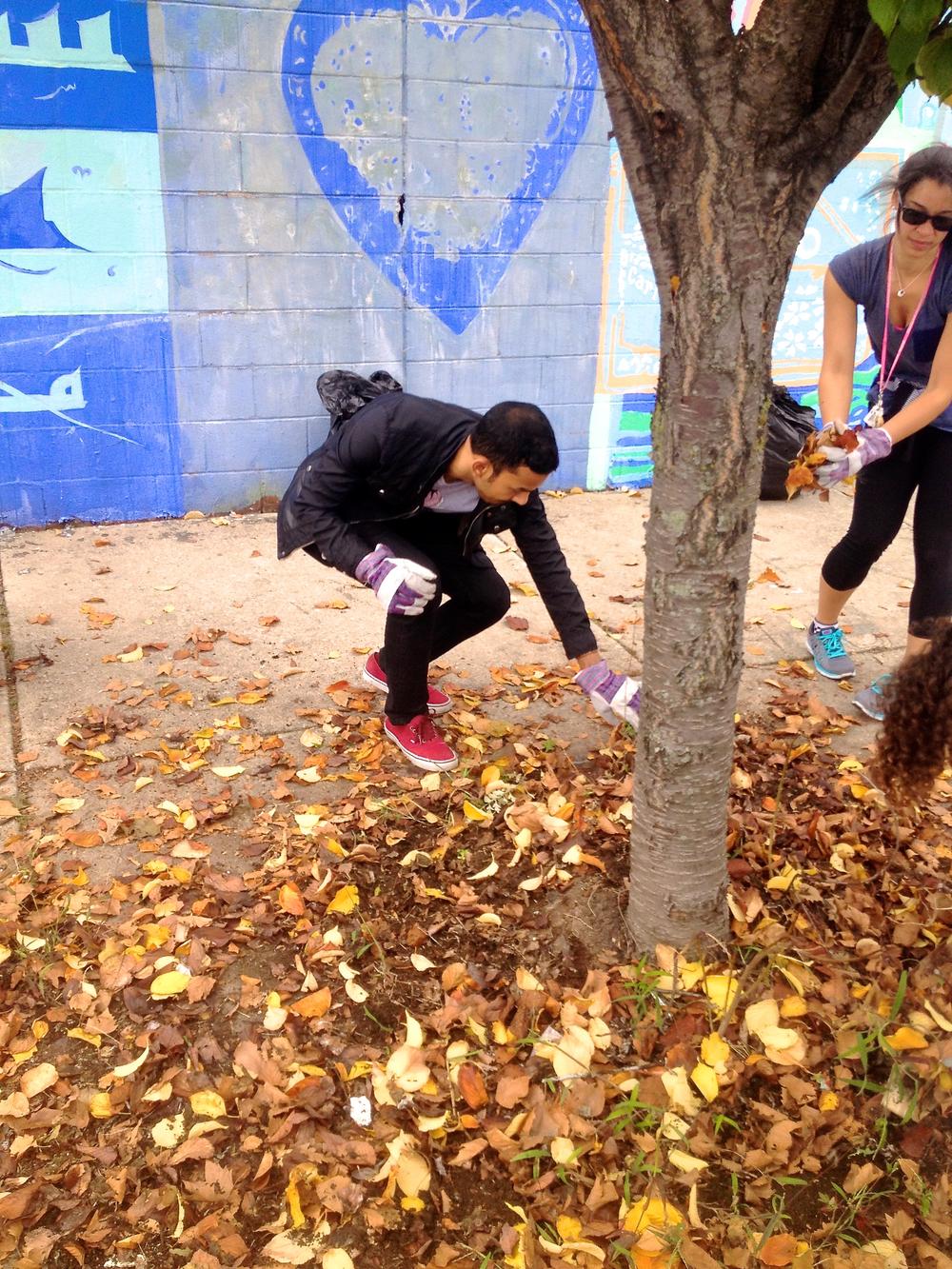 Fall_Cleanup_03.jpg