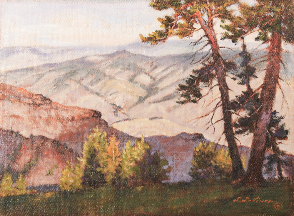 """""""HELL'S CANYON OVERLOOK NEAR SOMER POINT"""" oil 9""""x12"""" $500."""