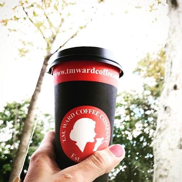 #cupoftea #peppermint #fall #teatime