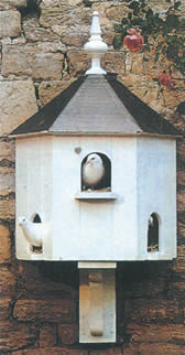 Dovecotes The Birdtable Company