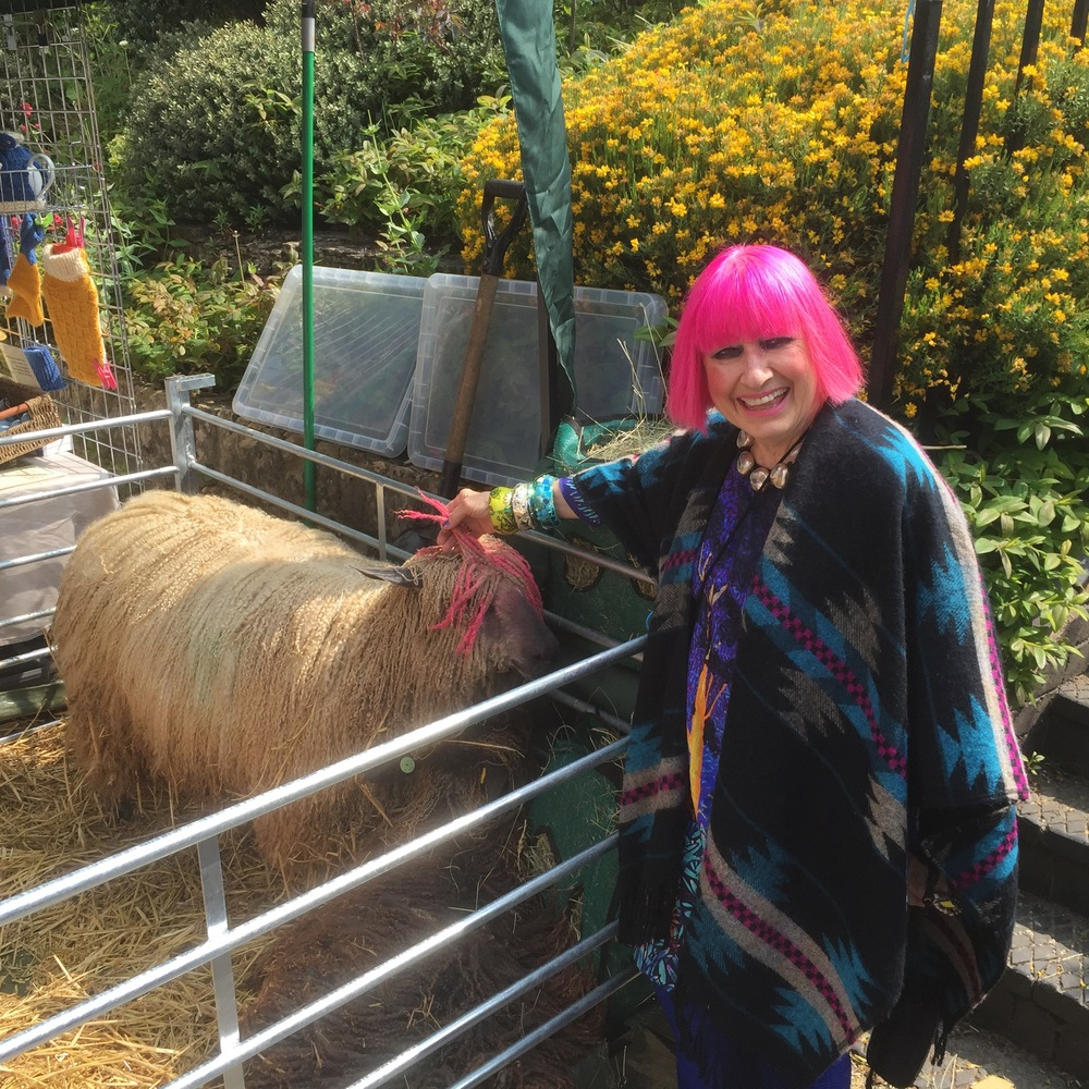 2016 - Dame Zandra Rhodes - loving the our Wensleydales - one of whom turned up with a pink fringe!  http://www.thefibreworks.co.uk/