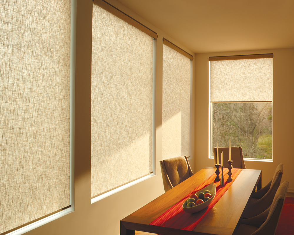 ROLLER SHADES