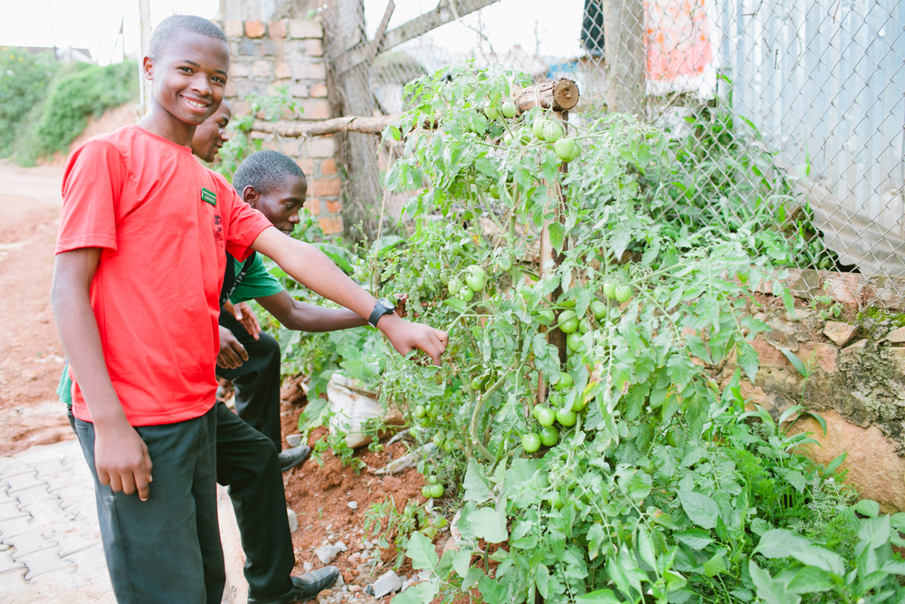 Student at Kampala High School shows Student Business Club garden project (1).jpg
