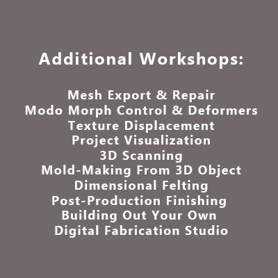 Additional Workshops
