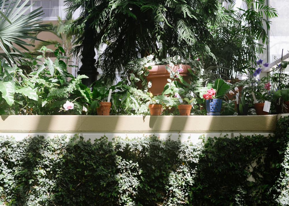 150404_hkp_botanicalgardens009.jpg