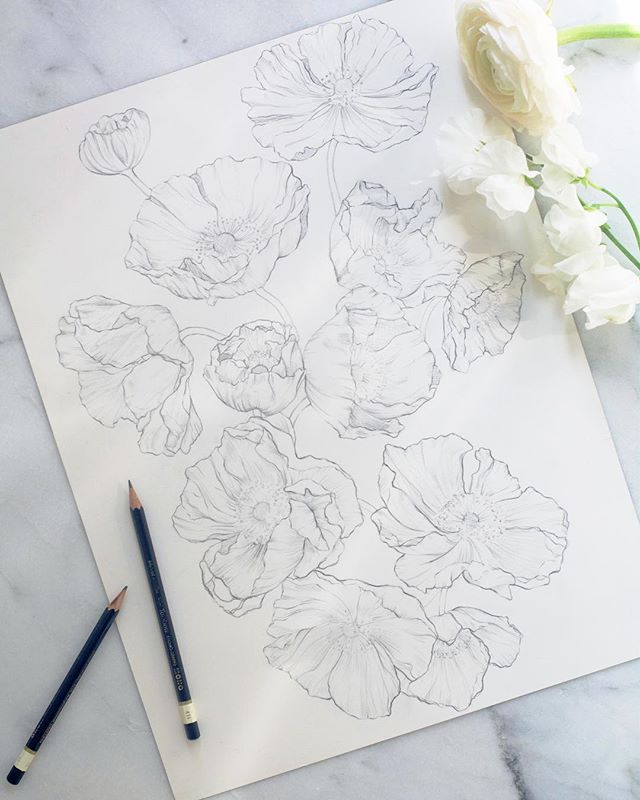 Sketching Icelandic poppies for @marchesafashion Notte's Spring 2020 Bridal collection! We've developed this into light as air embroidery on tulle and lightly dusted it with tiny clear paillettes for a little sparkle. Can't wait to show you! #marchesanotte #marchesa #textiledesign #textiledesigner #embroidery #bridal #romantic #lovelysquares #spring2020 #bridalfashionweek