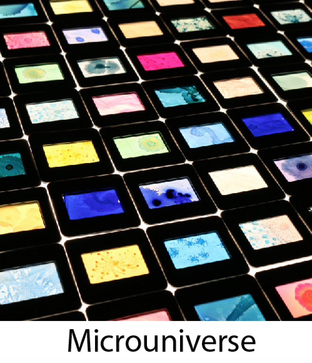 Microuniverse2.jpg