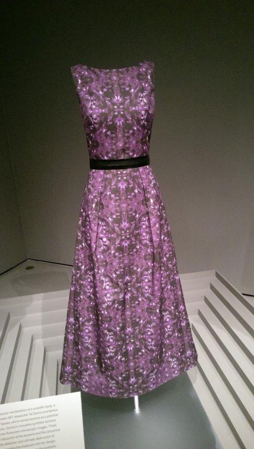 Fashion Descience, Boston Museum of Fine Arts, 2016