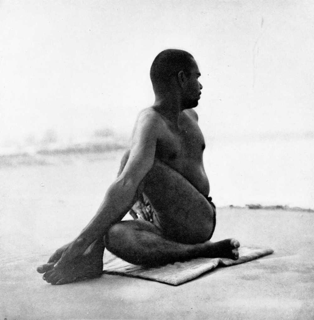 ardha-matsyendrasana-hatha-yoga.jpg