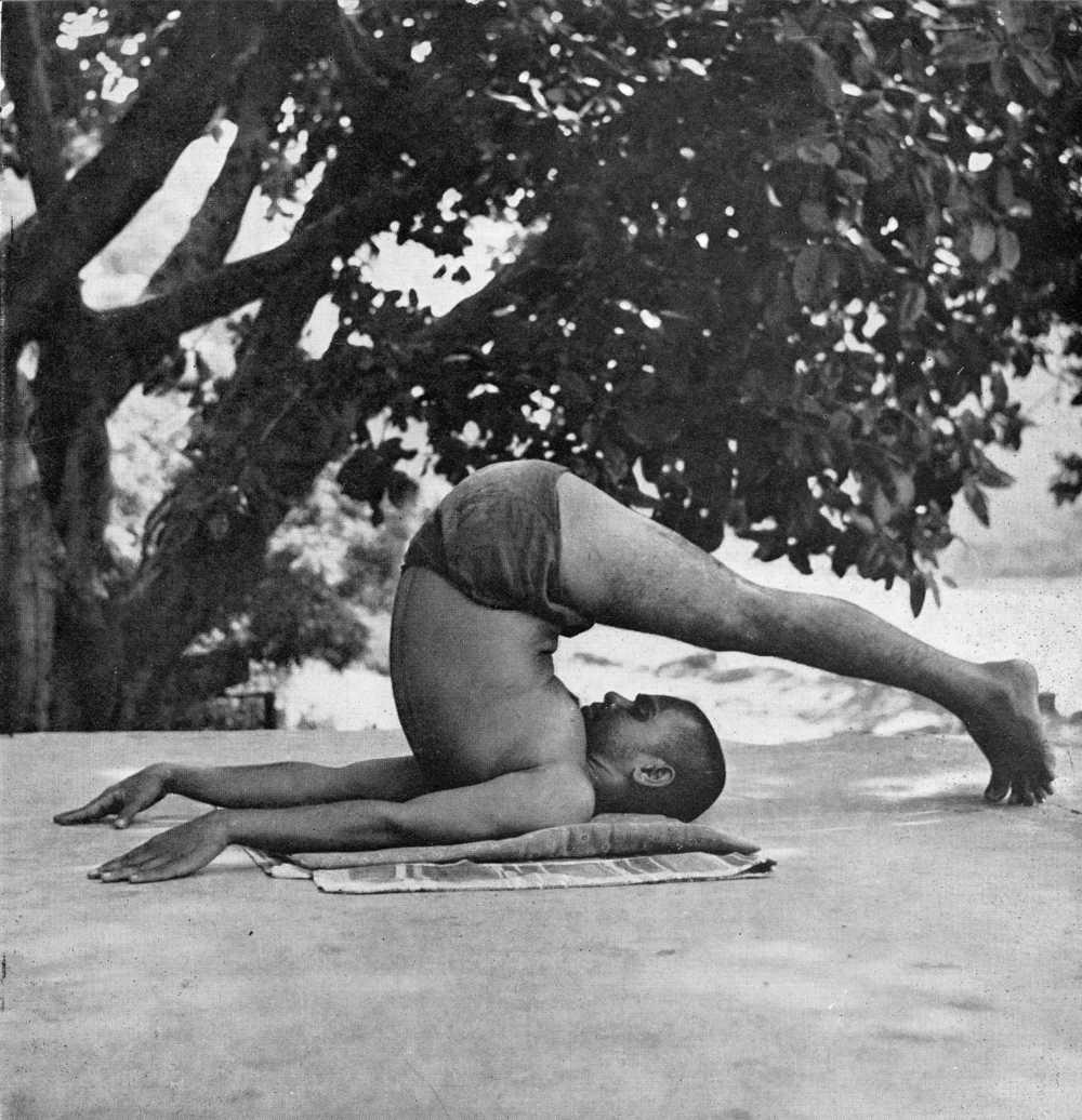 halasana-yoga.jpg