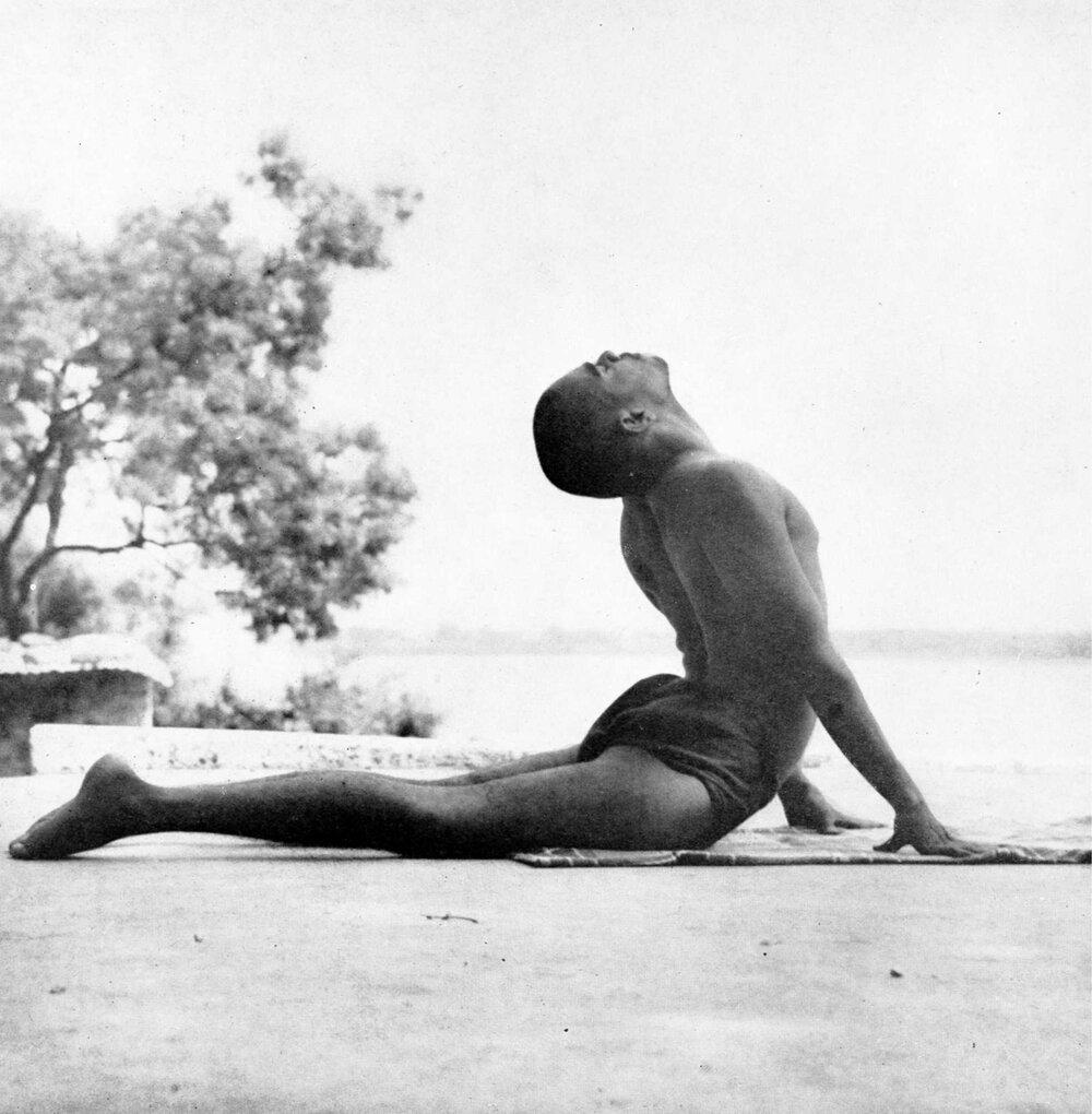 bhujangasana-posture-cobra.jpg