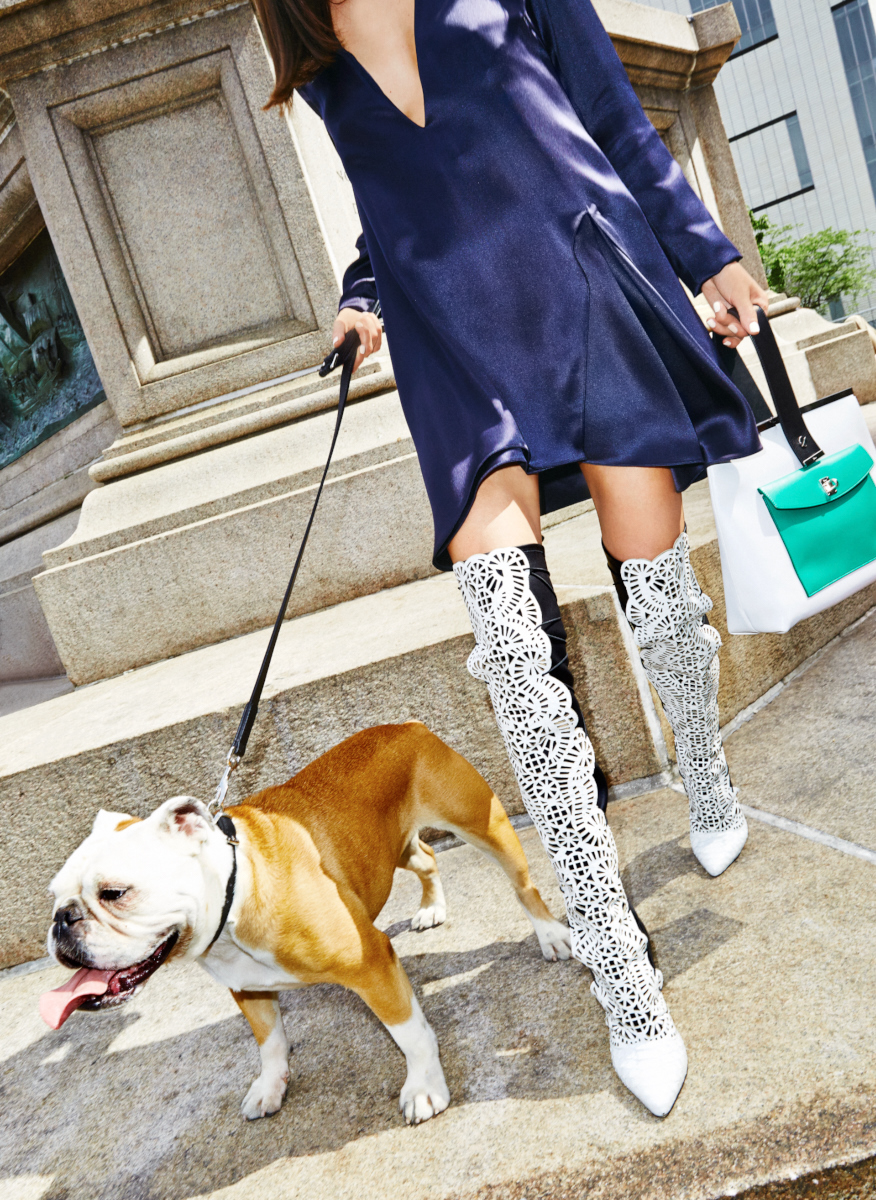 Fall accessories for Cosmo