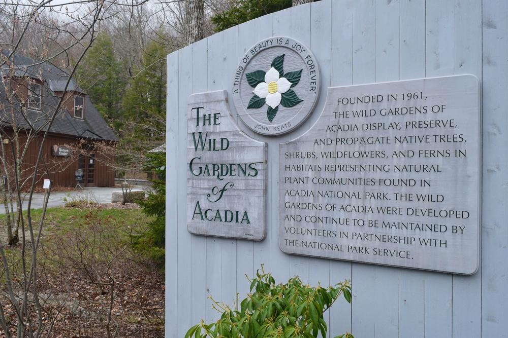 the-wild-gardens_26874036801_o.jpg